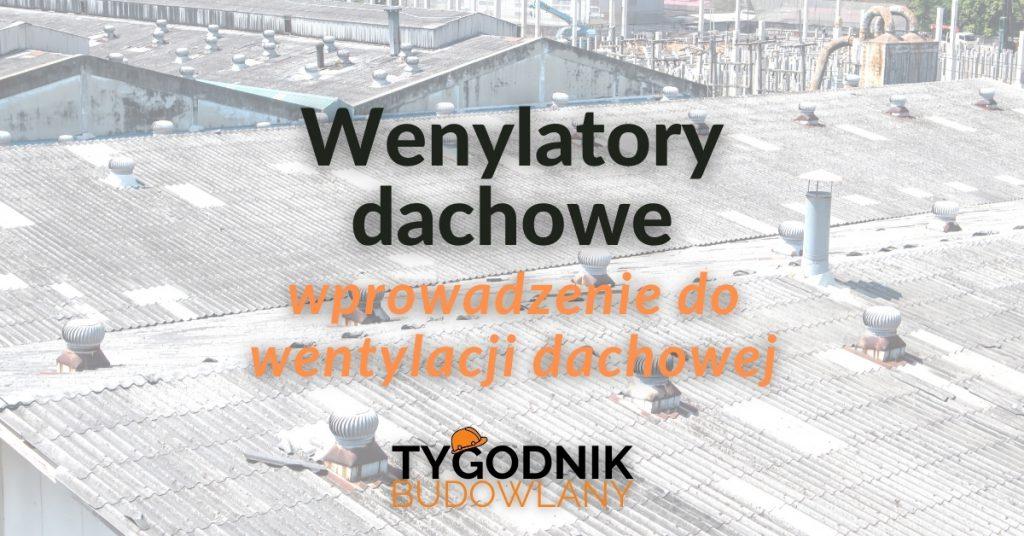 Wentylatory dachowe – wprowadzenie do wentylacji dachowej